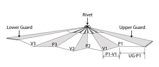 FIGURE 3. Open fan with labeled peaks and valleys