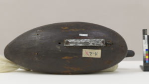 Fig. 2. Bottom of blue-winged teal drake decoy demonstrating a different style of lead weight and slightly curved base.  Attributed to Charles T. Wilson, Blue-winged Teal Drake Decoy, ca. 1900. Wood, paint and metal, 12.70 X 11.43 X 28.58 cm (overall). Collection of Shelburne Museum, gift of J. Watson, Jr., Harry H., and Samuel B. Webb. 1952-192.93.